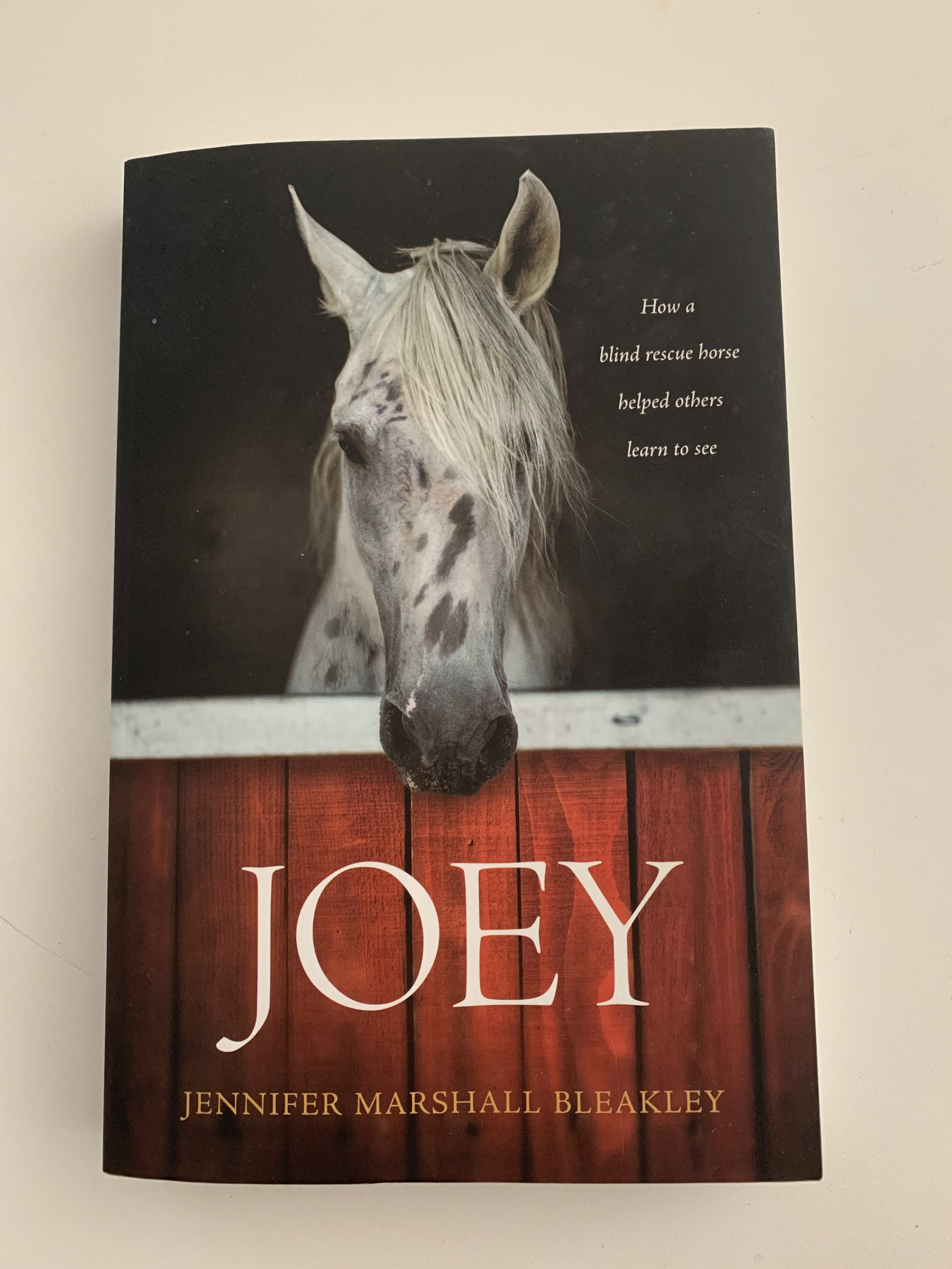 Joey Book Cover